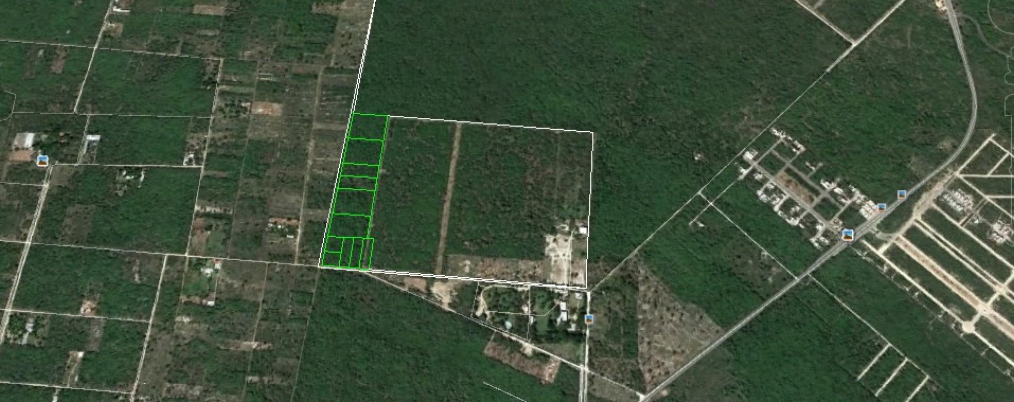 Rural Estate Property